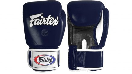 Fairtex Muay Thai Training Gloves Featured