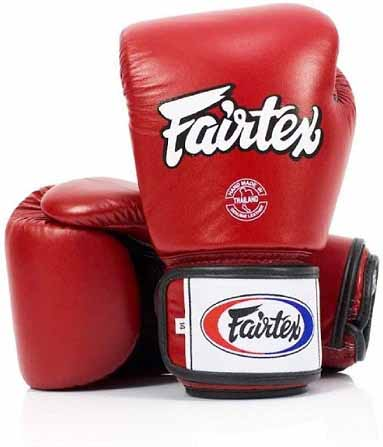 Fairtex Breathable Thai Style Training Gloves