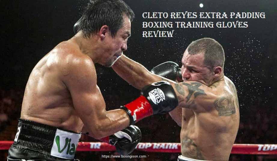 Cleto Reyes Extra Padding Boxing Training Gloves Review